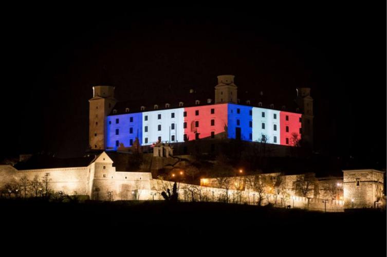 Bulsara Adv Francia Slovacchia